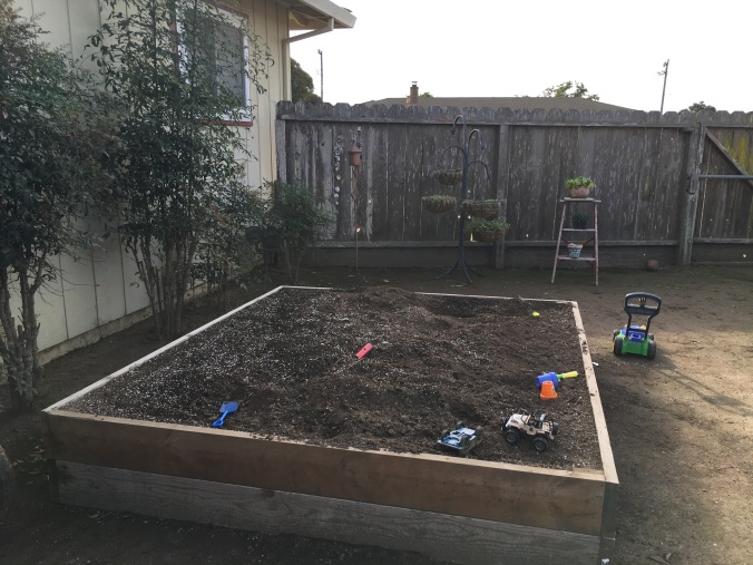 Raised Bed 011518